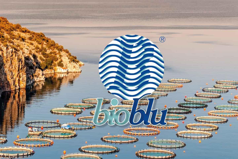 Bioblu - Pesca Pronta